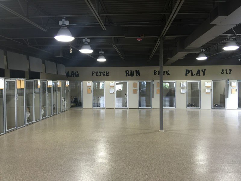 The canine boarding area and indoor play space