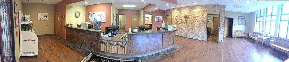 The inside lobby of Indian Prairie Animal Hospital