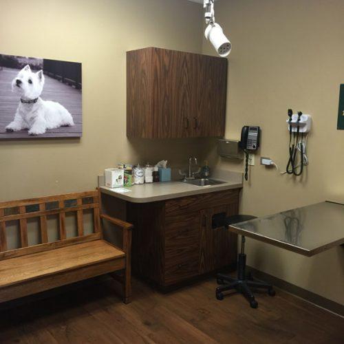 Small Dog Exam Room